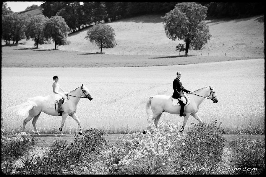 Mariage Morges Portes Des Iris Wedding Horses